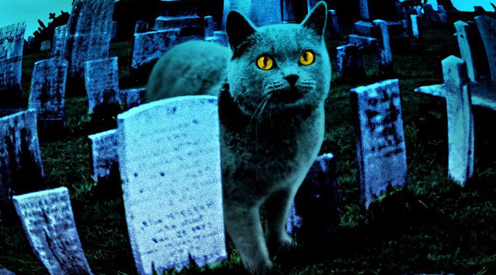 Промо к фильму «Кладбище домашних животных» (1989)