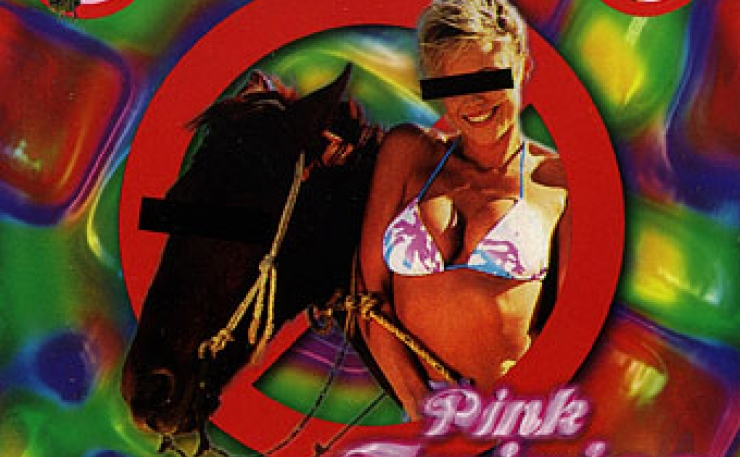 Pink fairies radio broadcast
