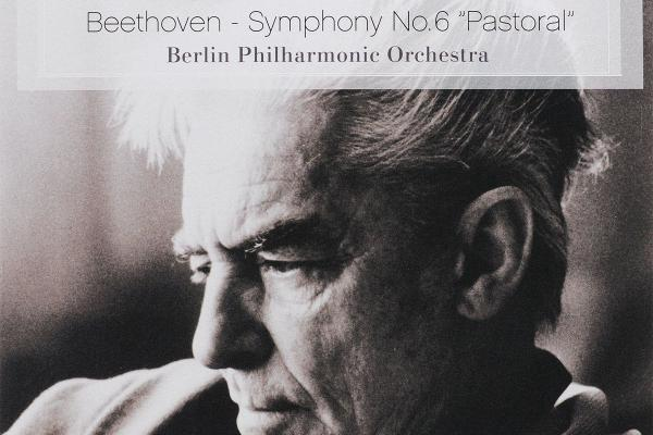 beethoven pastoral symphony essay Regardless of one's personal feelings about beethoven's third symphony, the fact that it is still discussed in one of the modern world's largest newspapers is a testament to its power and impact on music almost 200 years after it was composed.