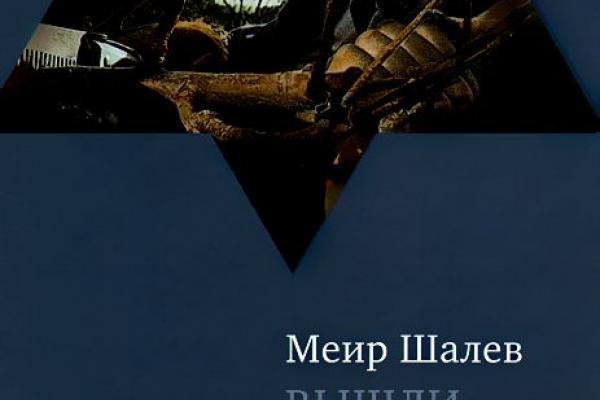 МЕИР ШАЛЕВ ВЫШЛИ ИЗ ЛЕСА ДВЕ МЕДВЕДИЦЫ FB2 СКАЧАТЬ БЕСПЛАТНО