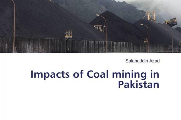 coal mining and its impacts essay Impact of coal mining on vegetation: a case study in jaintia hills district of meghalaya, india by kiranmay sarma thesis submitted to the international institute for.