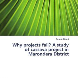 why project fail