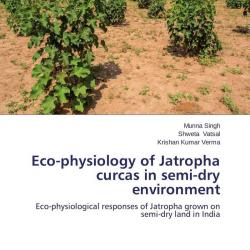 antibacterial activity of jatropha curcas and Jatropha curcas l euphorbiaceae physic nut, purging nut four antitumor compounds, including jatropham and jatrophone, are reported from other species of jatropha (duke and ayensu, 1984) studies on the control of snail vectors of fascioliasis: molluscicidal activity of some indigenous plants.