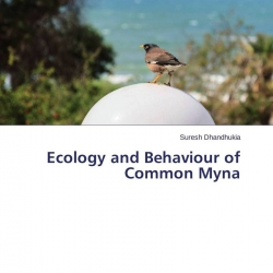 comparison of myna abundance and behavior We investigated whether the abundance of bitter receptor mrna expression from human taste papillae is related to an individual's perceptual ratings of bitter intensity and habitual intake of bitter drinks.