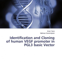 a research on cloning and the issues surrounding it When human cloning first became a concern, hollywood made many movies about armies of hitler's and the like coming to get normal americans, when the same mind as the donor, that is a product of setting and circumstance there are, however, many issues with human cloning that do pose ethical.