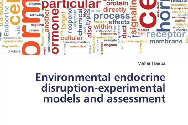 endocrine disruptors in the environment Endocrine disruptors and their impact on human health and the environment context - endocrine disruptors are chemicals that can influence the functioning of the system of hormones and receptors that regulate the body.