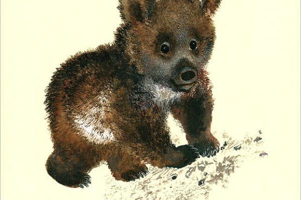 иллюстрации к рассказам чарушина медвежонок проверить
